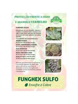 FUNGHEX  SULFO 12x50 ML-1 - 025018