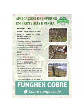 FUNGHEX COBRE 12x200 ML-1 - 025025