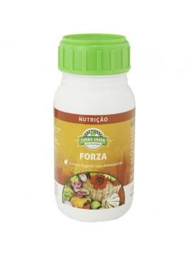 FORZA 12x200 ML-1 - 025023