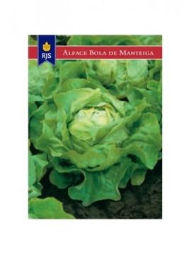 RJS ALFACE BOLA DE MANTEIGA (003) - 001007