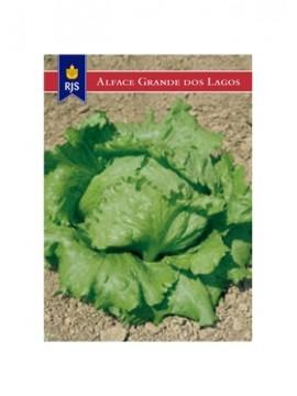 RJS ALFACE GRANDE DOS LAGOS (007) - 001008