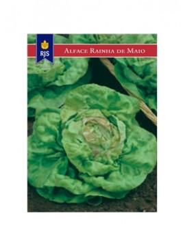 RJS ALFACE RAINHA DE MAIO (004) - 001009